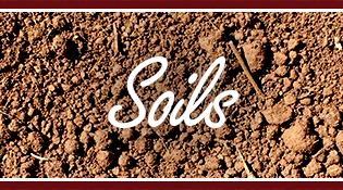 Duke Transport Soils