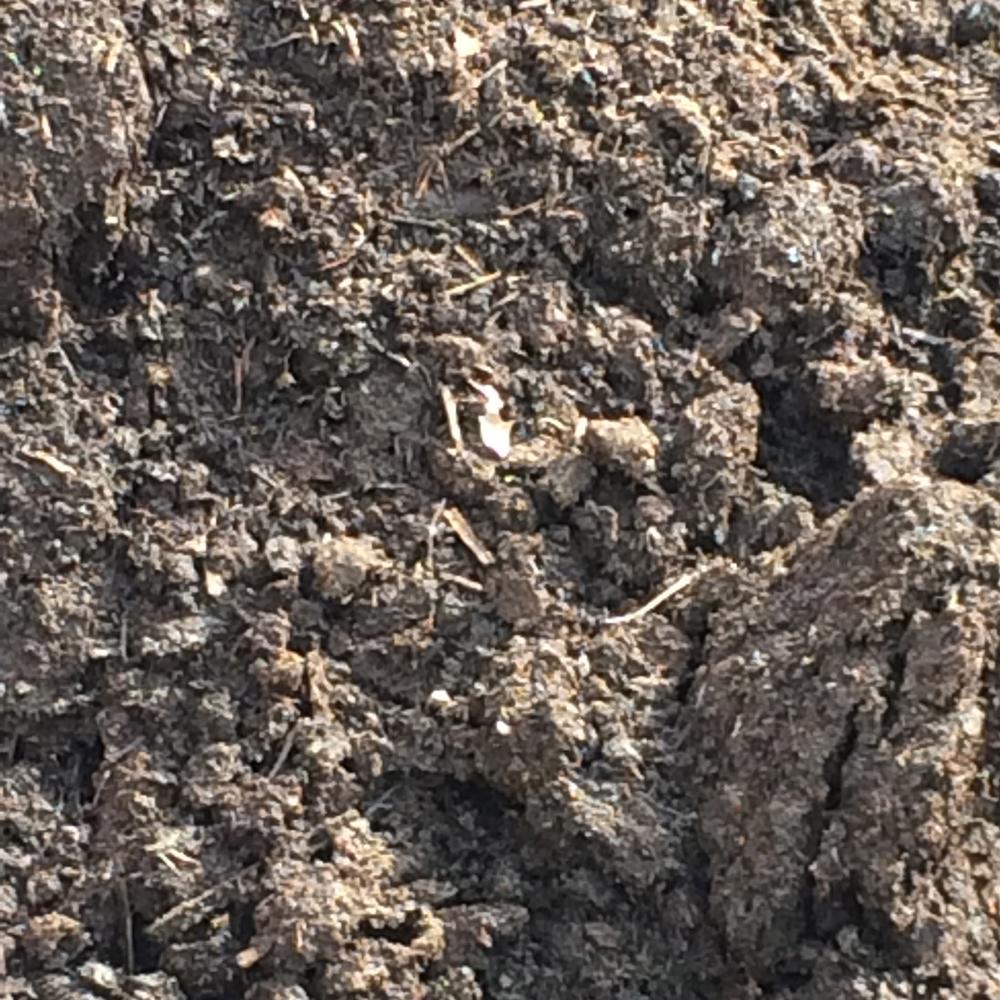 Topsoil in bucks and montgomery county pa duke for Mushroom soil